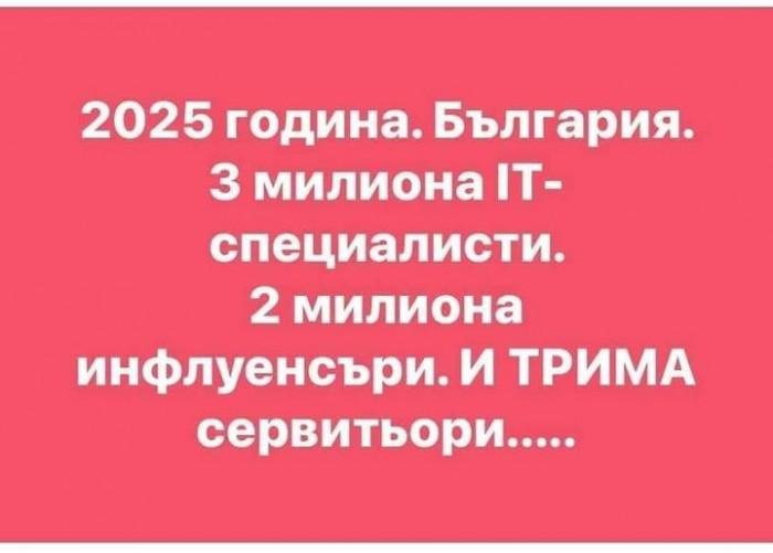 Вицове: 2025 година